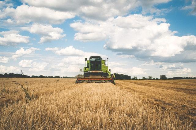 phát triển doanh nghiệp nông nghiệp tại Việt Nam